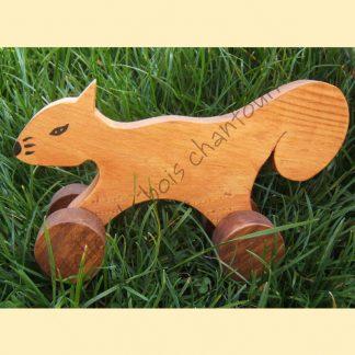 Ecureuil à roulettes